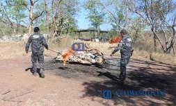 Incinera PGR Colima más de 450 kilos de cocaína