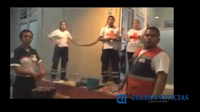 paramedicos-video