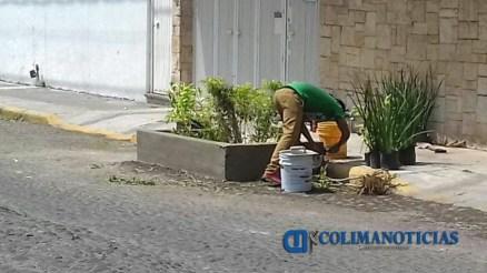 Jardinera Calle Antonio Caso 1