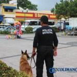 policia estatal seguridad centro