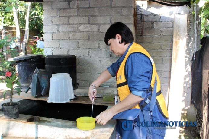 Prevención dengue zika chikungunya (2)