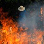 Incendios en el Amazonas. Foto  Reuters  150x150 - La selva del Amazonas arde a una velocidad récord