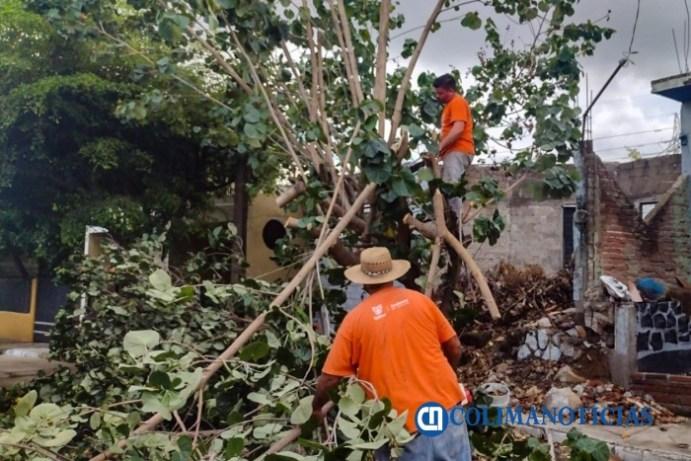 Continúan los trabajos de atención de reportes luego del paso de la tormenta Dolores