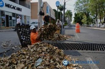 limpieza personal del Ayto Colima