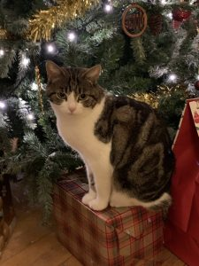 Morag in front of the Tree