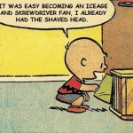 Charlie Brown iceage