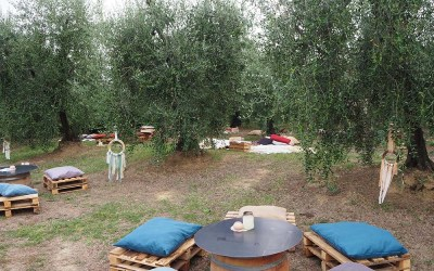 Snack amog the olive trees