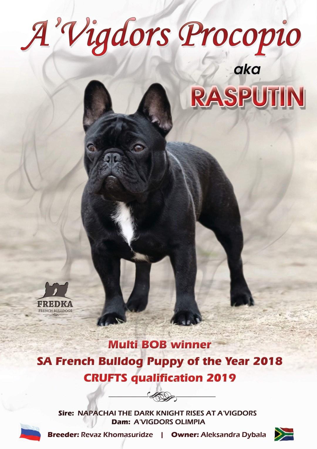 Magazine relaunch