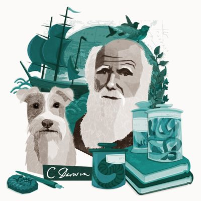 Darwin: An Animal Welfare Advocate