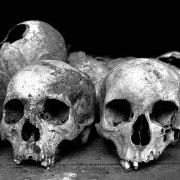 Crânes des victimes