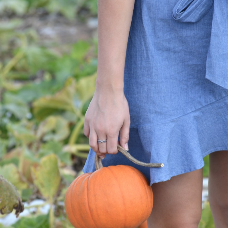 Fall Date Ideas + The Cutest Ruffled Chambray Dress