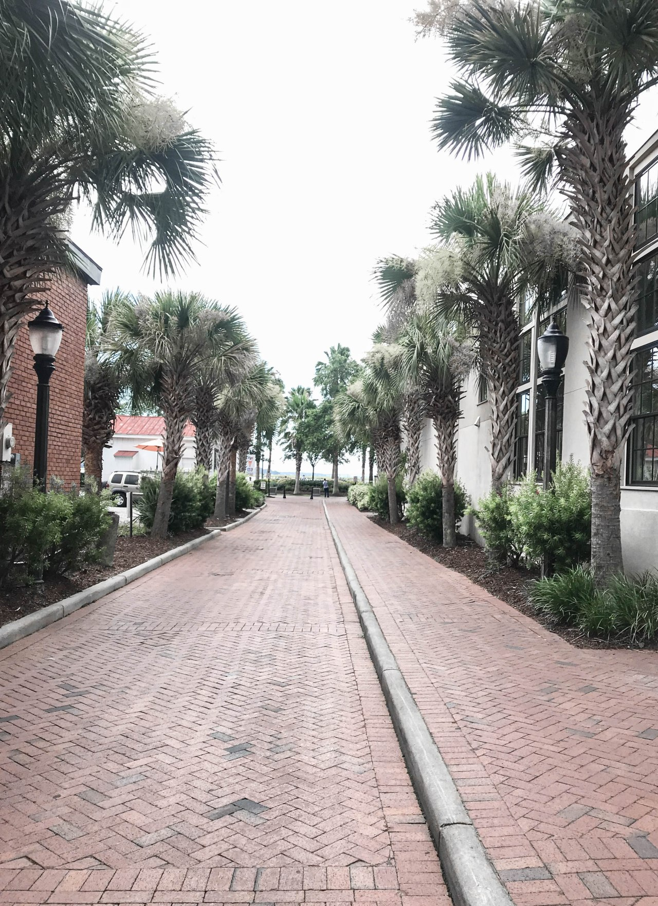 Beaufort, South Carolina Travel Guide: What to do in Beaufort
