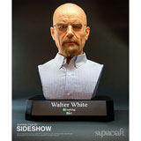 Walter White / Supacraft
