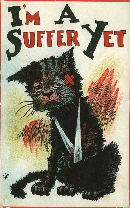 "The 1913 British law known as ""The Cat and Mouse Act"" released Suffragettes who were sick from the force-feeding so they could recover (or die) at home. Once the women were well again, they could be re-arrested. Palczewski, Catherine H. Postcard Archive. University of Northern Iowa. Cedar Falls, IA."