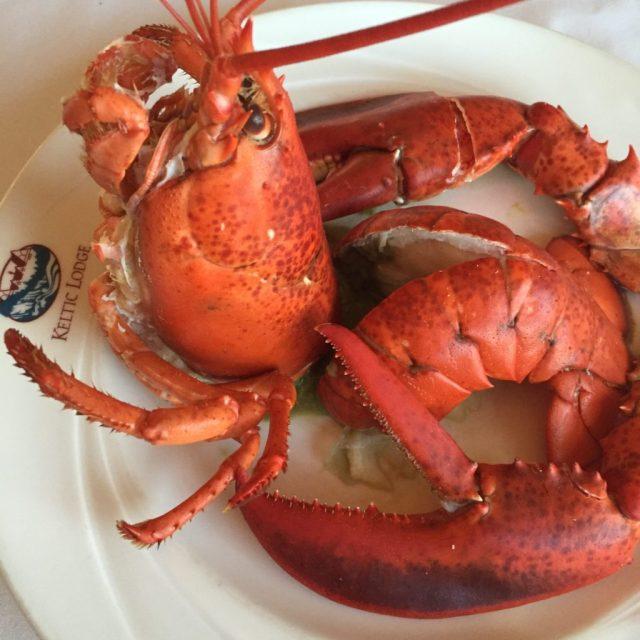 Lobster Love - Colleen Friesen