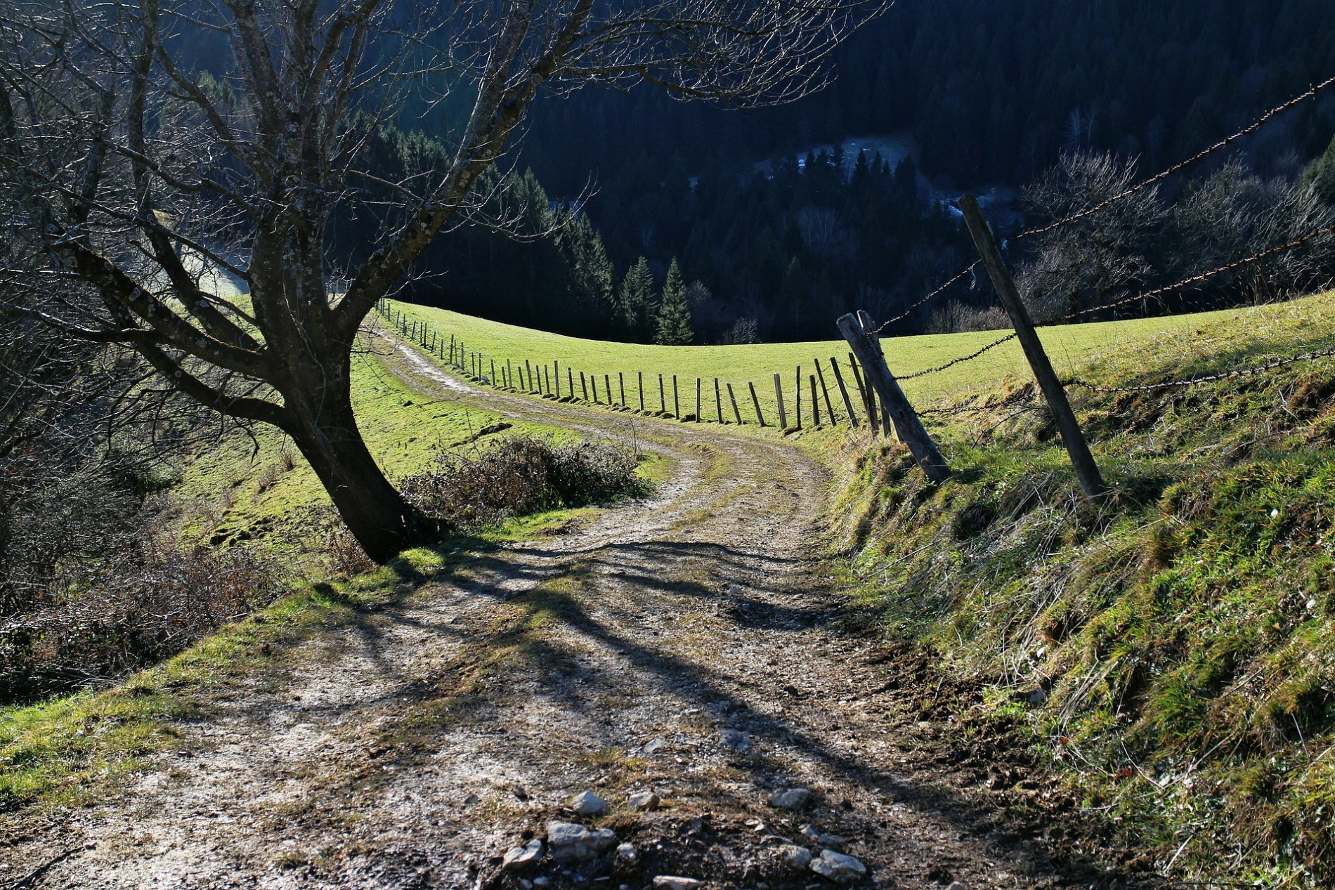 road-237651_1920
