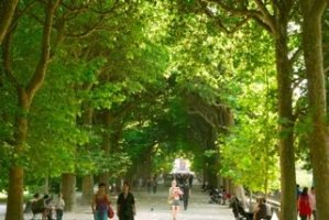 Under the trees, Jardin des Plantes
