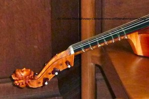 Viol (viola da gamba) - female head