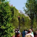 Traffic lights continue to change among the trees and plants on Champs Elysees