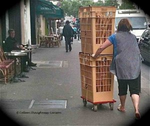 Pushing the Baguette along rue de la Roquette, Bastille, Paris, France