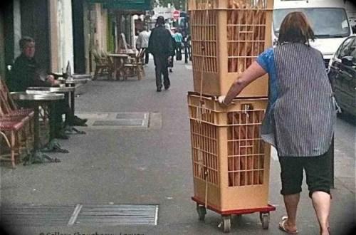 Pushing the Baguette along rue de la Roquette, Bastille, Paris, France