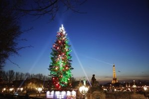 Christmas Tree, Place de la Concorde, Paris, tallest Christmas tree in Europe, comes from Alsace