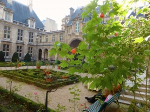 Indian summer in the Carnavalet Museum garden with the hibiscus still blooming - mid November - person sitting on the bench