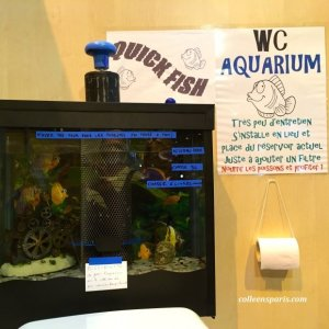 Concours Lépine-Fabrice Cruette's WC Aquarium. It cleans the fish tank with filtered water that refills the toilet