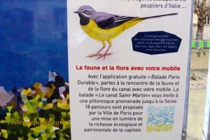 Scan the code for a walk along the canal identifying the flora and the fauna with photos. Along Canal Saint Martin