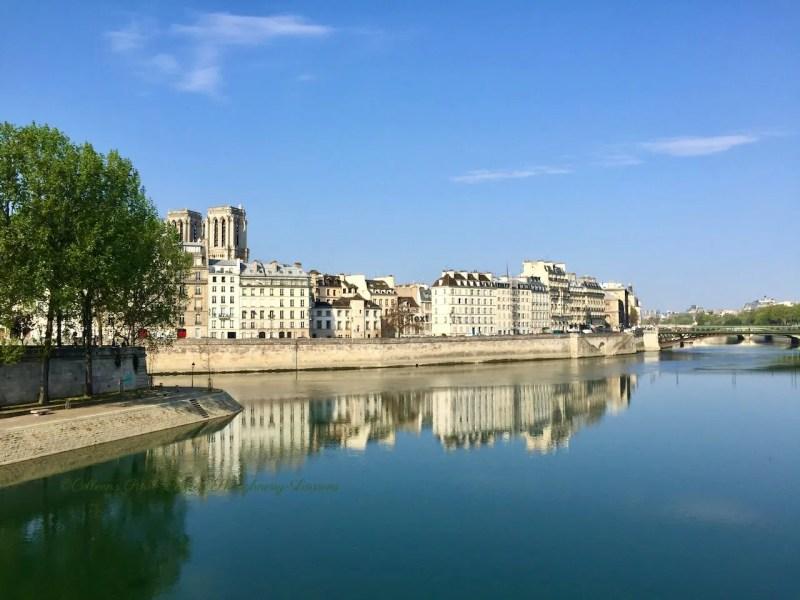 image Notre-Dame and facades Ile-de-la-Cité