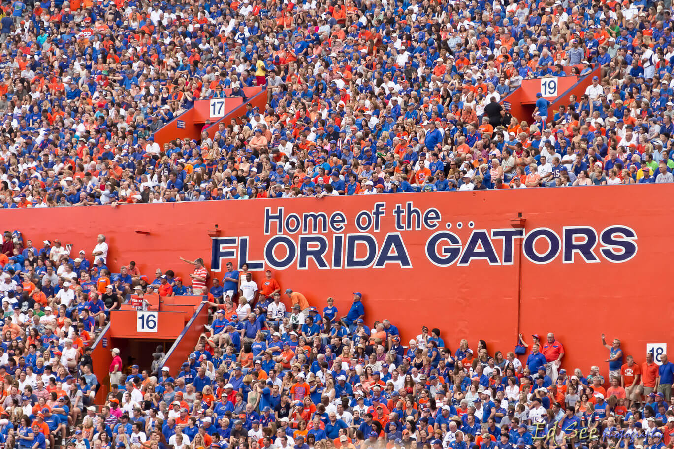 The Official University Of Florida Bucket List College