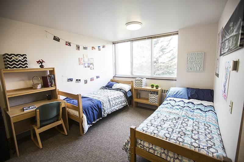 10 Things to Know About Living in a College Dorm - College ...