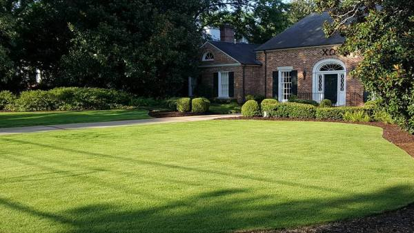 landscapers and lawn care in athens