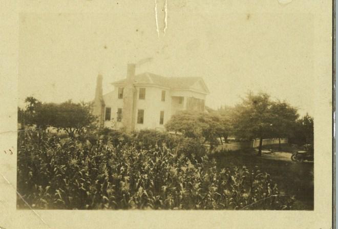 vines house 1