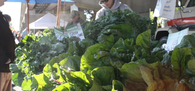 It's OPENING DAY at the Collingswood Farmers' Market!
