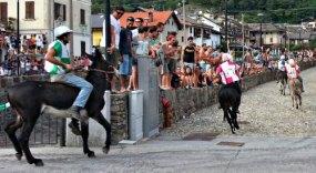 Col20160815_180625_Piazza BolzaniColl9