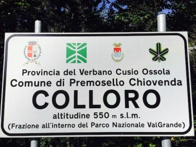 cartello Colloro