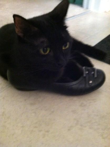 Zoe-shoe.jpg