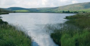 Black Moss Reservoir