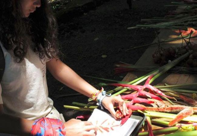 Visita la Casa de la Segunda Expedicin Botnica  Colombia Travel