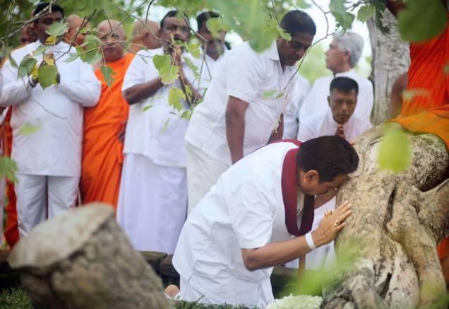 Mahinda Sri Maha bodhi 1