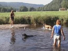 wandelen in frankrijk met je hond