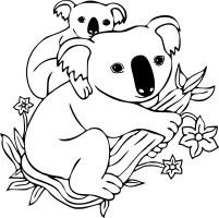 Coloriage Koala et dessin à imprimer