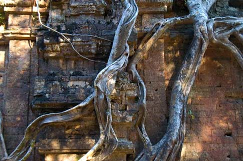 Sabor Prey Kuk - Cambodia - Cambodge