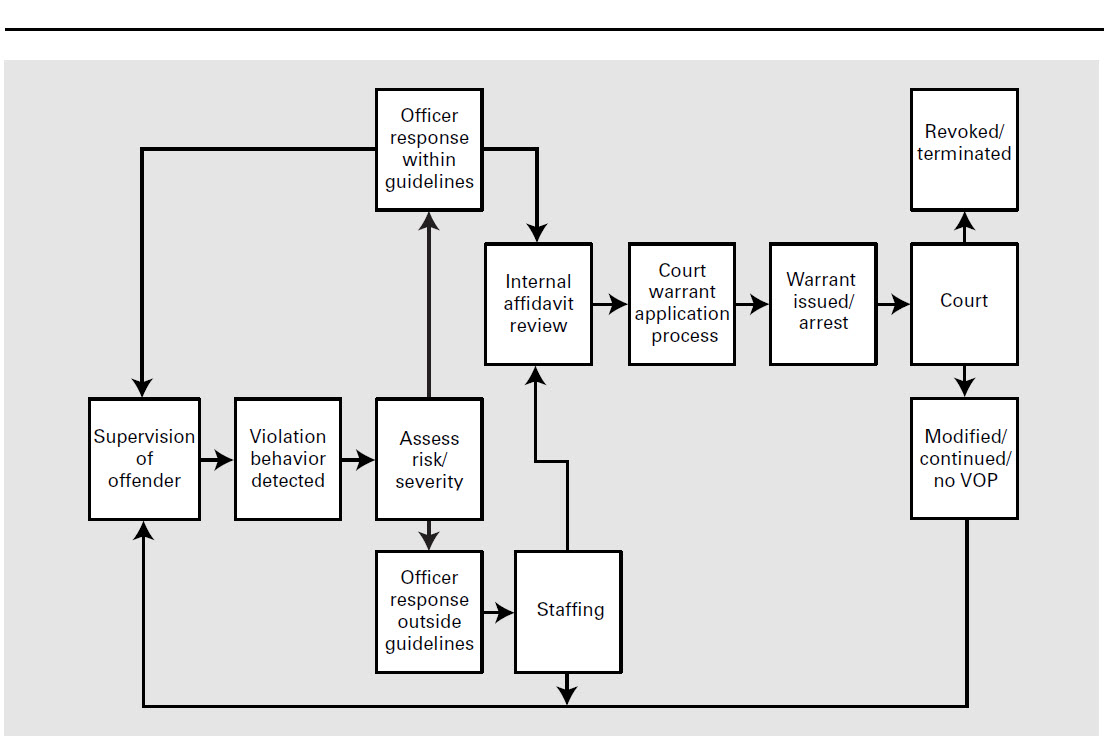 Excellent Flow Chart Probation Violation Lawyer Colorado