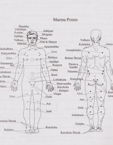 Mantra purusha marries the healing sciences of and marma therapy connection is very important for purposes also marriage colorado rh coloradoayurveda