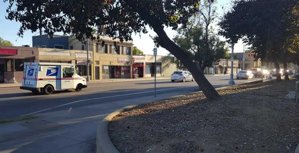A native plant garden is planned at Washington and Mentor in Pasadena (Photo - Staff).