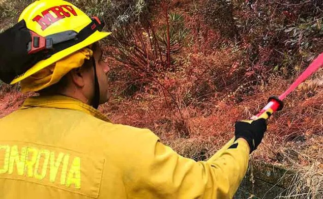 a man with a yellow protective helmet and gear holding a hose and spraying a hillside