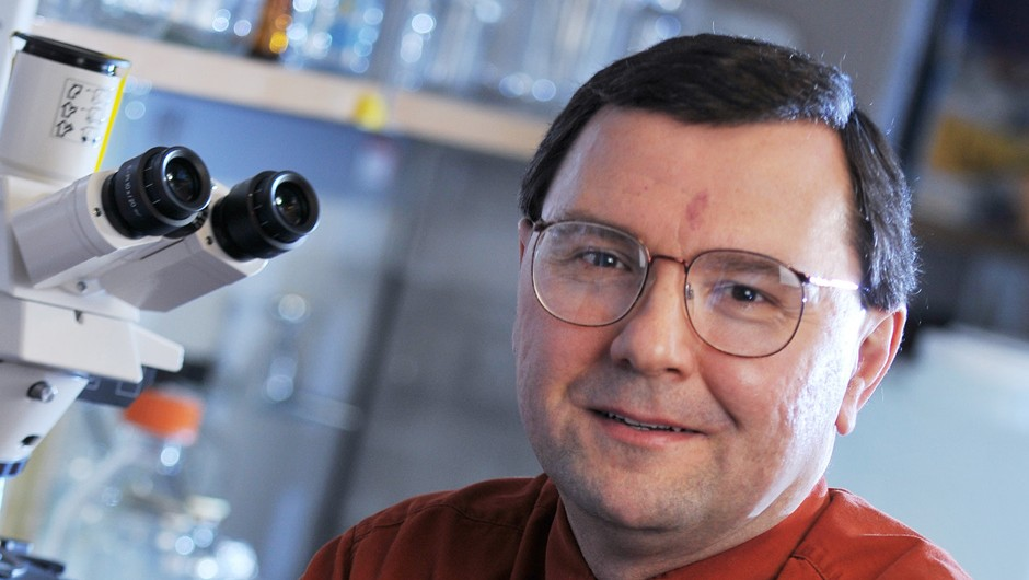 AACR News: Little molecule makes big difference in bladder cancer metastasis