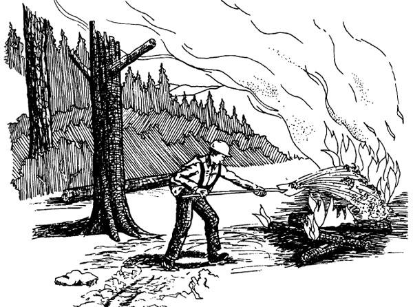 Colorado Firecamp, Wildland Fire Suppression Tactics